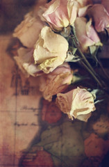 (Meg Brooke) Tags: roses texture map bouquet dried