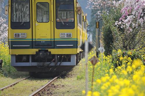 Isumi Railways