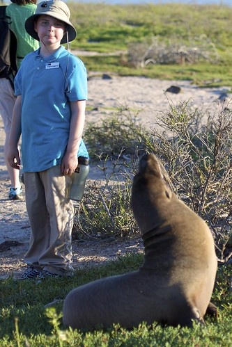 Sea Lion Checks Out Roger