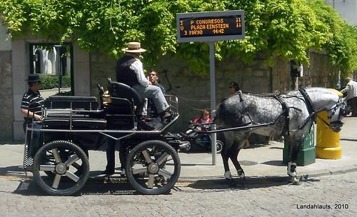 ¿Autobús Urbano?