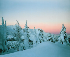 Snowy dawn in the Purcells (xtremepeaks) Tags: christmas pink trees winter sky snow canada mountains cold tree nature forest sunrise dawn skiing bc snowy pass glacier purcell jumbo purcells superaplus aplusphoto pregamewinner