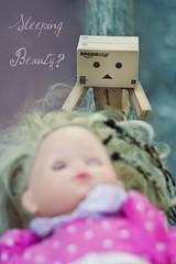 La Belle au Bois Dormant? (Sandrine Escamilla) Tags: toy kiss princess prince figurine sleepingbeauty jouet fairytales princesse baiser conte danbo revoltech belleauboisdormant danboard