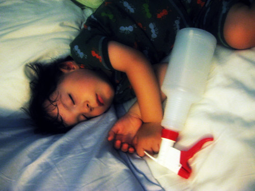 Asleep Wtih A Spray Bottle