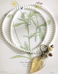Wild Hearts necklace (gwen) Tags: white flower 20d yellow necklace leaf jewelry alameda madebygwen