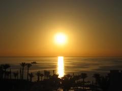 Sinai Sunrise (werner boehm *) Tags: water sunrise reflections palms waterfront redsea egypt sharmelsheikh diving spiegelung sinai wellen palmen diveboat rotesmeer nabqbay tauchboat wernerboehm