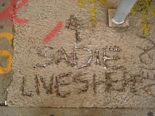 sadie lives here