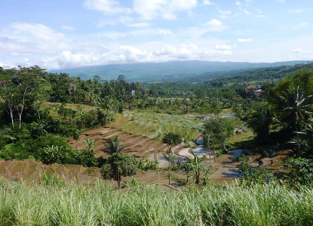 Java-Bandung-Yogyakarta (23)