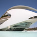 España, València : Palacio de las Artes Reina Sofia, 2005 arch. Santiago Calatrava