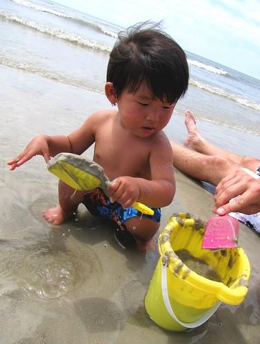 beach hilton head 9