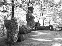 Echidna (stegdino) Tags: monster statue statua mostro bomarzo echidna mithology challengeyouwinner thechallengegame friendlychallenges yourockwinner pregamewinner pin11112011