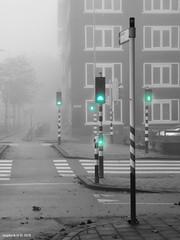 GREEN (zzapback) Tags: city autumn light urban mist