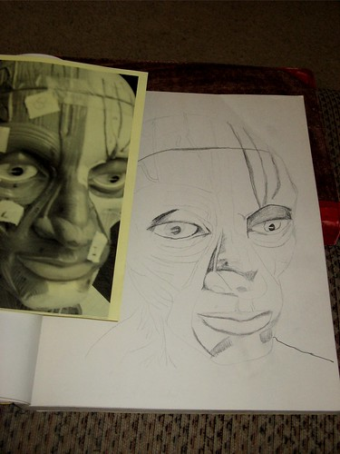 Facial structures drawing