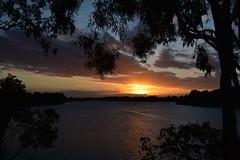 1st July 2017 (Images by Jeff - from the sea) Tags: sunset clouds dusk twilight gumtree water burnettriver bundaberg bluesky landscape sun nikon d7200 tamronsp2470mmf28divcusd queensland australia 1500v60f 7dwf