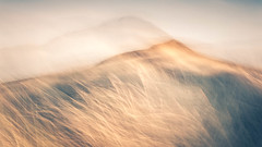 Windswept (ChrisDale) Tags: greatbritain abstract beach blur chrisdale chrismdale coast coastal dunes dunstanburgh embleton england evening icm intentionalcameramovement longexposure movement northumberland ocean photography sand sea seaside summer sunset uk unitedkingdom