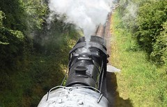 Great Central Railway Thurcaston Leicestershire 2nd July 2017 (loose_grip_99) Tags: greatcentral railway railroad rail train leicestershire eastmidlands england uk steam engine locomotive gassteam uksteam trains railways preservation transportation gcr midlands thurcaston rothley lms stanier 8f 280 48624 july 2017