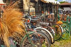 Bike Share? (Paul Van Damme) Tags: bike aberfoyle fuji x100 ontario canada fleamarket