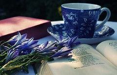 DSC02830-02 (suzyhazelwood) Tags: tea teacup poetry books vintage garden summer reading food drink flowers floral blue creativecommons sony a6000 poems