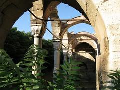 Overgrown entrance portico to the Mosque of Ahmet Pasha, Serres (5telios) Tags: architecture canon pillar mosque greece macedonia porch ottoman pasha ottomanarchitecture serres camii ahmet yunanistan osmanl g9 revak canong9 ottomanstyle mosqueofahmetpasha ahmetpasha