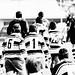 Rugby Falconara