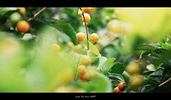Between blur & clearness