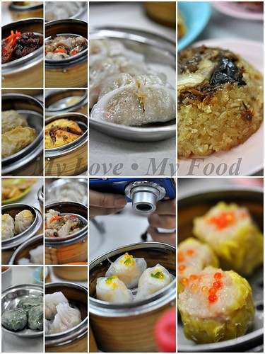 2009_12_18 Tea Garden 060 (steam)