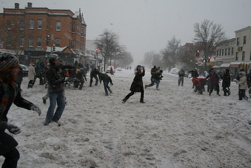Snowball Mayhem