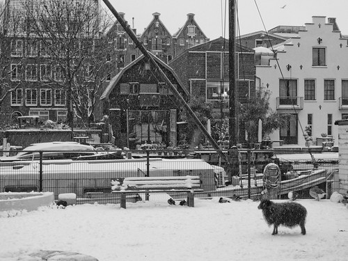 snow  amsterdam_21