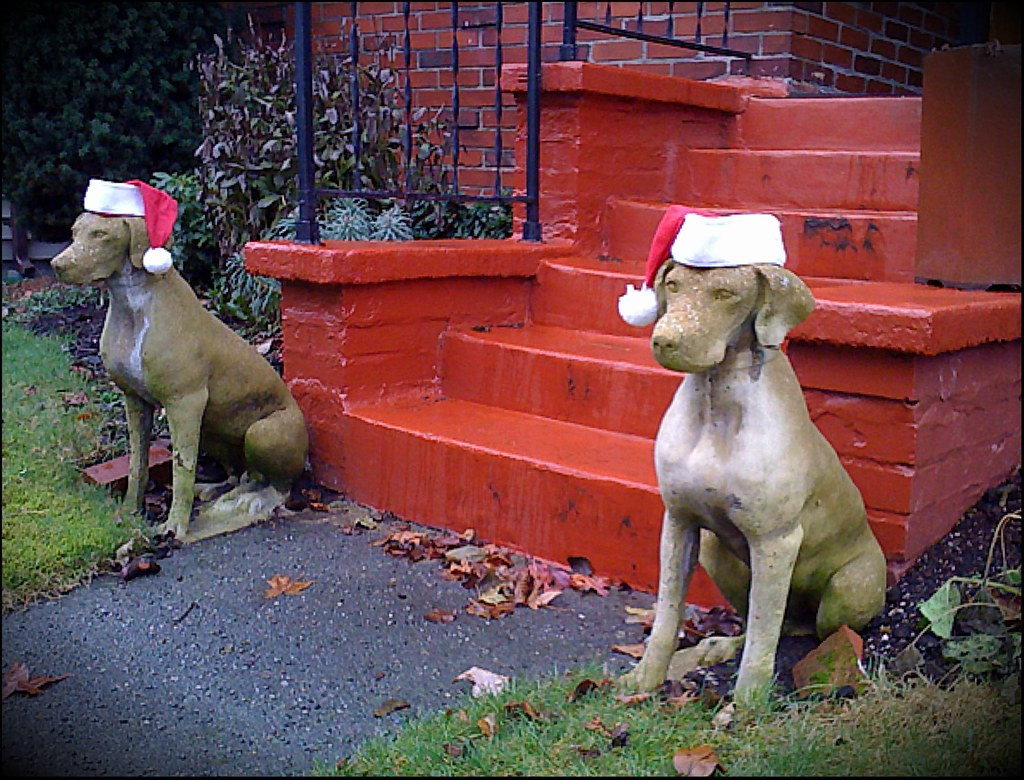 iPhone Wednesday #23:  Christmas Gone to the Dogs