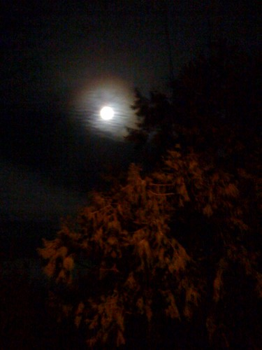 Blue moon 12/31/09