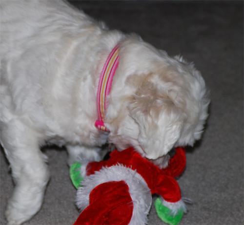 Putting-Santa-away