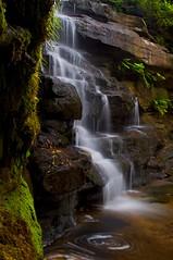 Somersby Falls (Lyndon (AussieDingo)) Tags: water waterfall sydney australia nsw wetlands centralcoast somersbyfalls