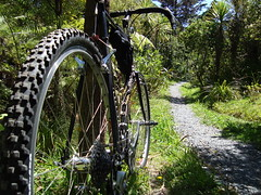 Centennial Park (ibikenz) Tags: newzealand auckland surly rambling crosscheck roughriding mixedterrain findingdirtinthebigcity