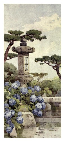 012-Un arbusto de hortensias-The flowers and gardens of Japan (1908)-  Ella Du Cane