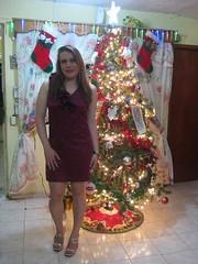 Vestido para Navidad