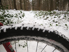 Dymock Woods Snow Ride!