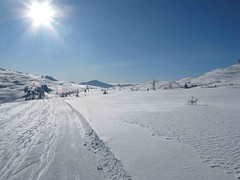 SnowSkool Banff - Sunshine Village (SnowSkool) Tags: canada banff sunshinevillage snowskool skiinstructorcourses snowboardinstructorcourses
