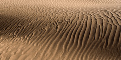 Sand (pas le matin) Tags: lighting light texture sahara sand desert lumire dunes dune tracks traces sable dry morocco maroc sec saharadunes mhamid sandtexture dunesdumaroc texturedesable dunesdusahara moroccandunes