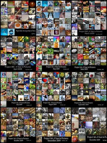 365工程:一年的照片!