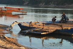 man power (aquanica) Tags: car ferry laos motobike attapeu bolaven sekongriver