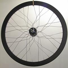 wheel_spider