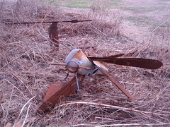 downed mosquito