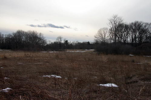 february field