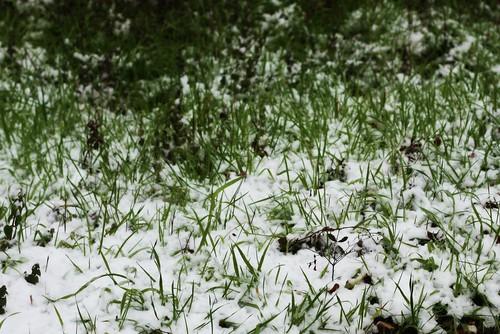 021210 snow5