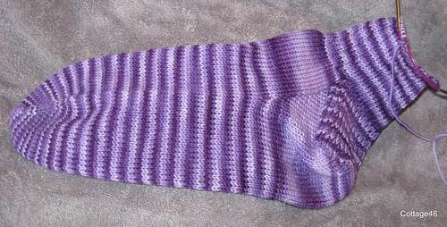 VK Vanilla socks