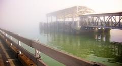 Misty Dock (bark) Tags: sanfrancisco mist water fog canon dock embarcadero nik