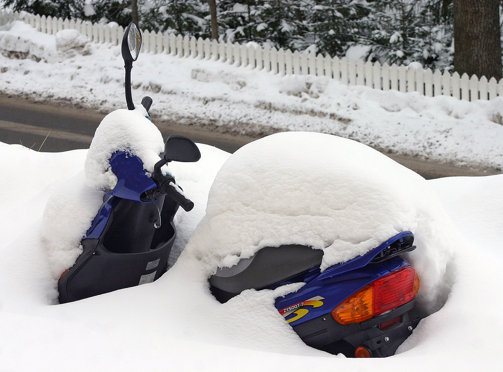 To the Snowmoped!