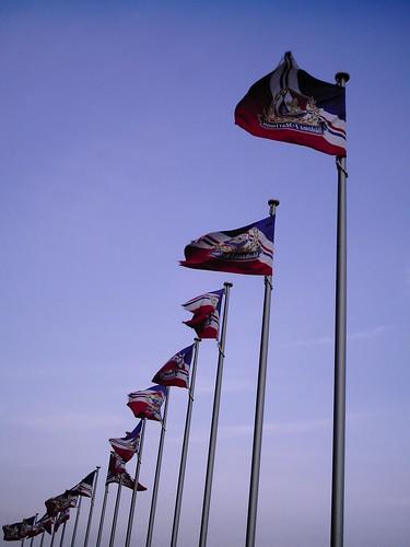 Flags (izone 550)