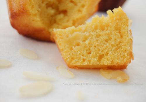 muffin - fetta
