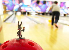 # 46/100 -- Bowling Alley Bugs by Toria Clark