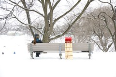 Tobogganing (JesseK-G) Tags: winter toronto financialdistrict blizzard tobogganing trinitybellwoodspark snowstormqueenstreet feb262010
